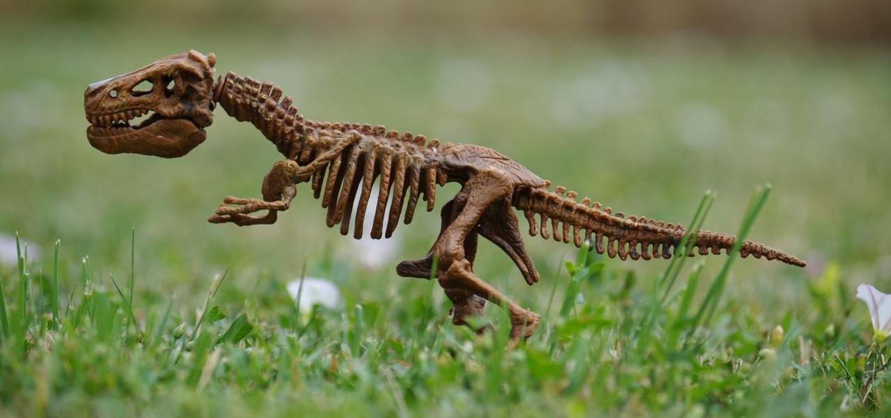 Arche Noah Dinosaurier