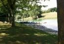 Lac près de Toulouse : L'orme blanc