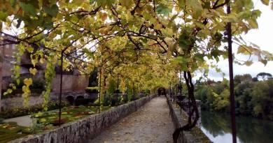Balade d'automne entre Albi & et les vignobles de Gaillac