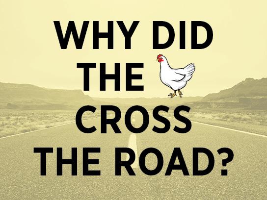 joke-chicken-crossing-road.jpg