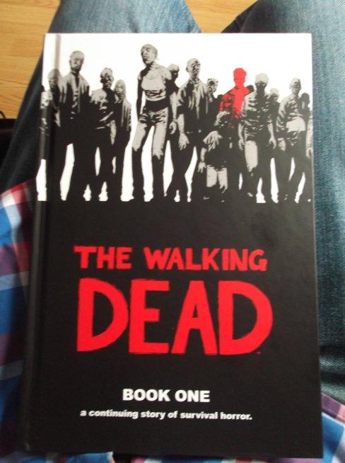 the_walking_dead__book_1_by_delorean7-d6fdtzt