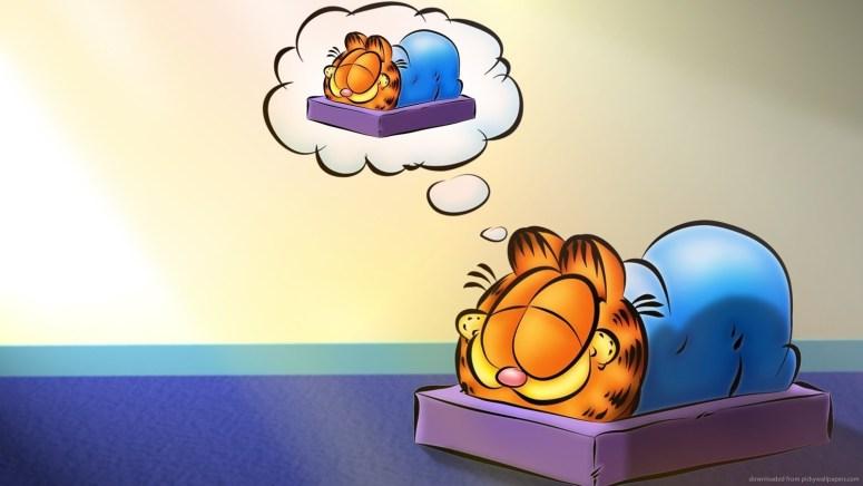 garfield-dreaming-of-garfield-sleeping