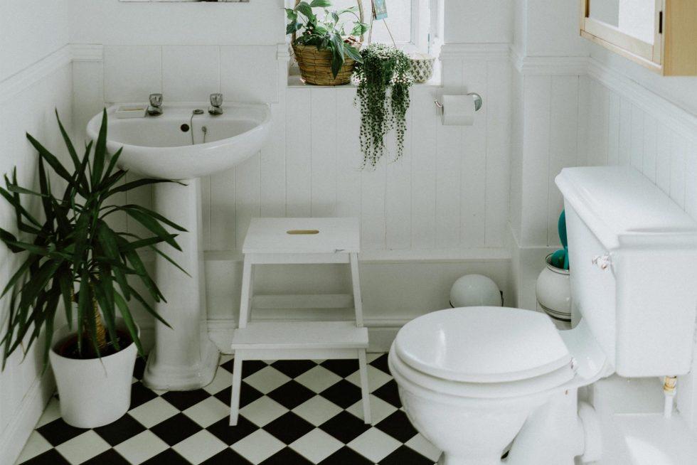 toilettes zéro déchet