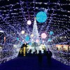 光の祭典2015など!奈良のクリスマスイルミネーションおすすめ☆