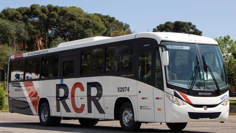 Marcopolo vai fornecer 123 ônibus para RCR de Recife
