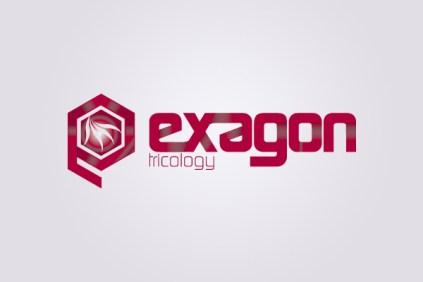 Exagon Logo Tricology