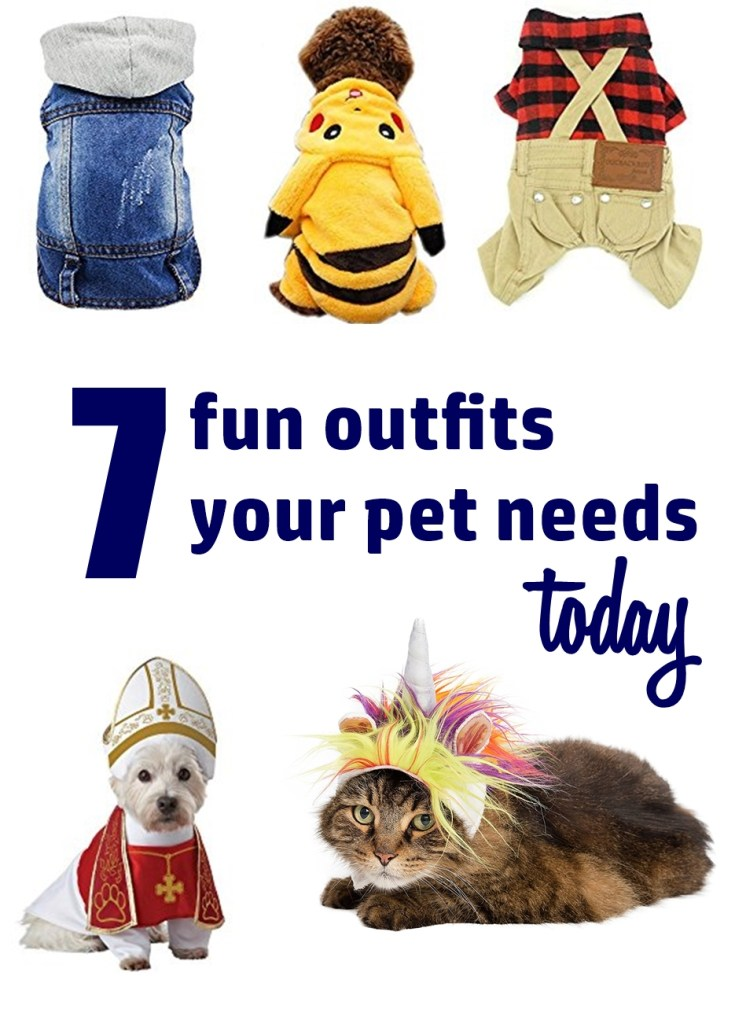 Pet Costumes | 7 Fun Outfits For Your Pet