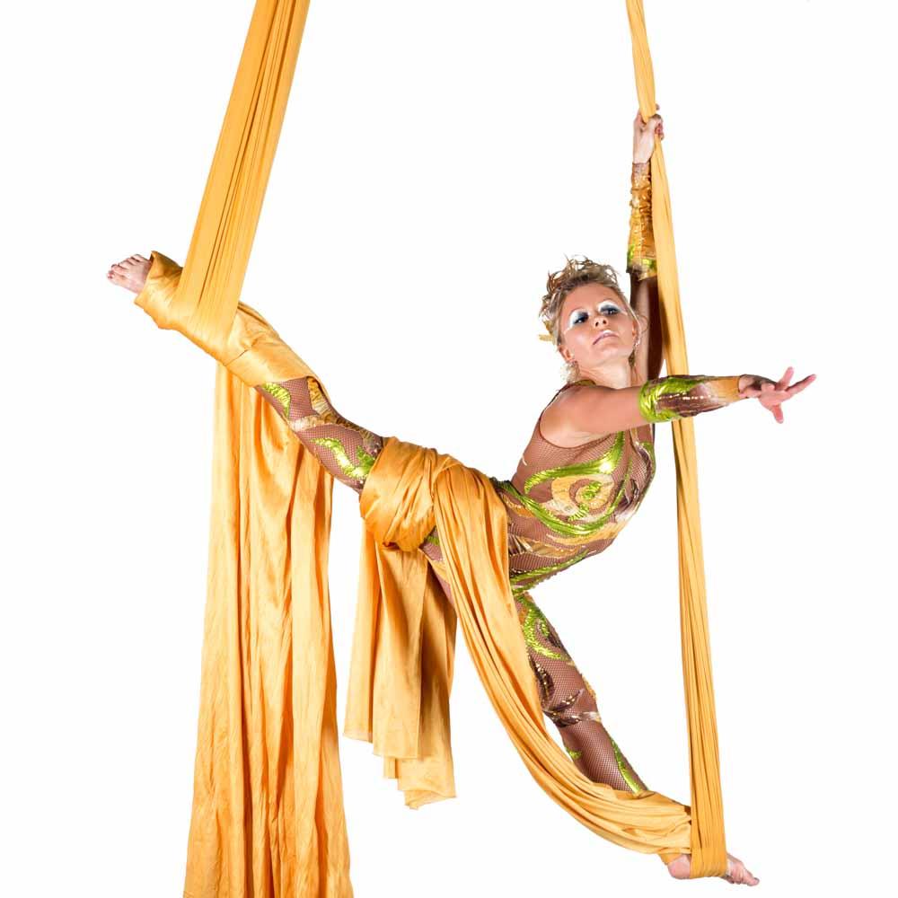 Cirque Aerial Performer