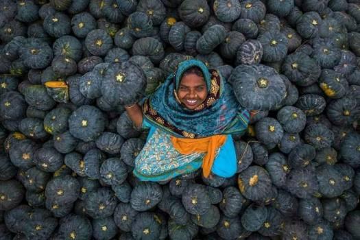 Happy-Melon-Farmer