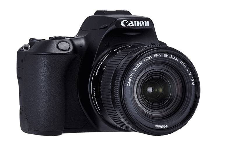 canon2501