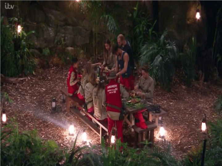 im a celeb weekly roundup