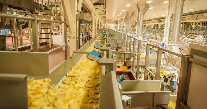Biggest crisp factory
