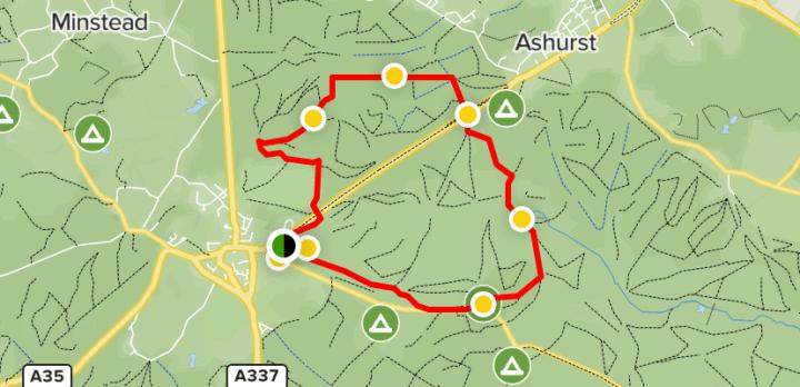 lyndhurst walk