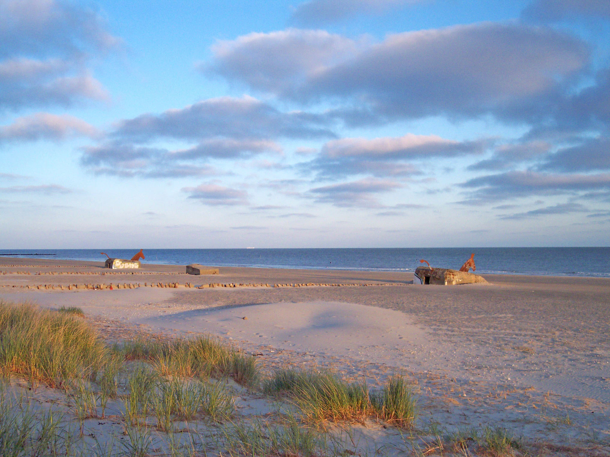 Blavand Beach