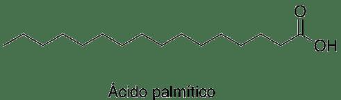Resultado de imagen para ácido esteárico y ácido palmítico
