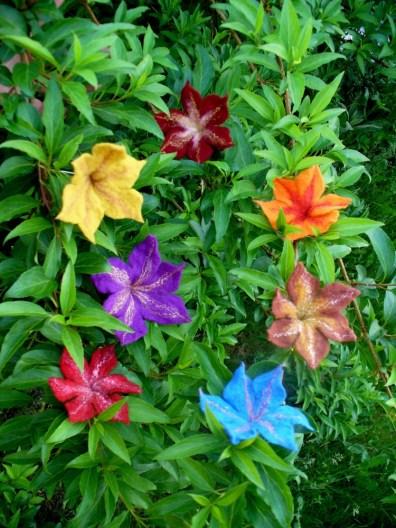 Blumen bunt 1