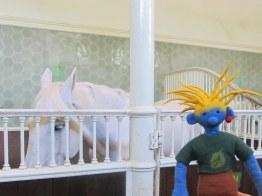 Im königlichen Pferdestall bei Claudia (so heißt das Pferd)