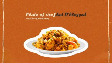 Plate Of Rice by Ani D'Blessed