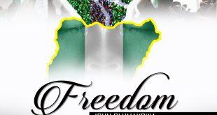 Freedom by John Olumayowa