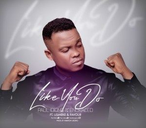 Like You Do by Paul Idiong Engraced Usimeke & Favour