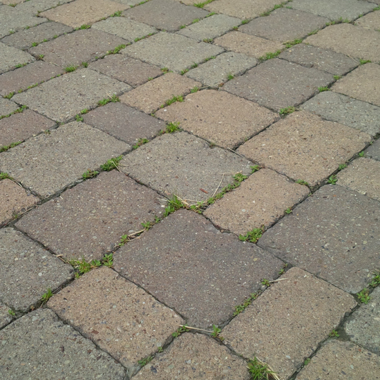 This Diy Paver Patio Was Actually A Much More Manageable Project Than We Expected Here