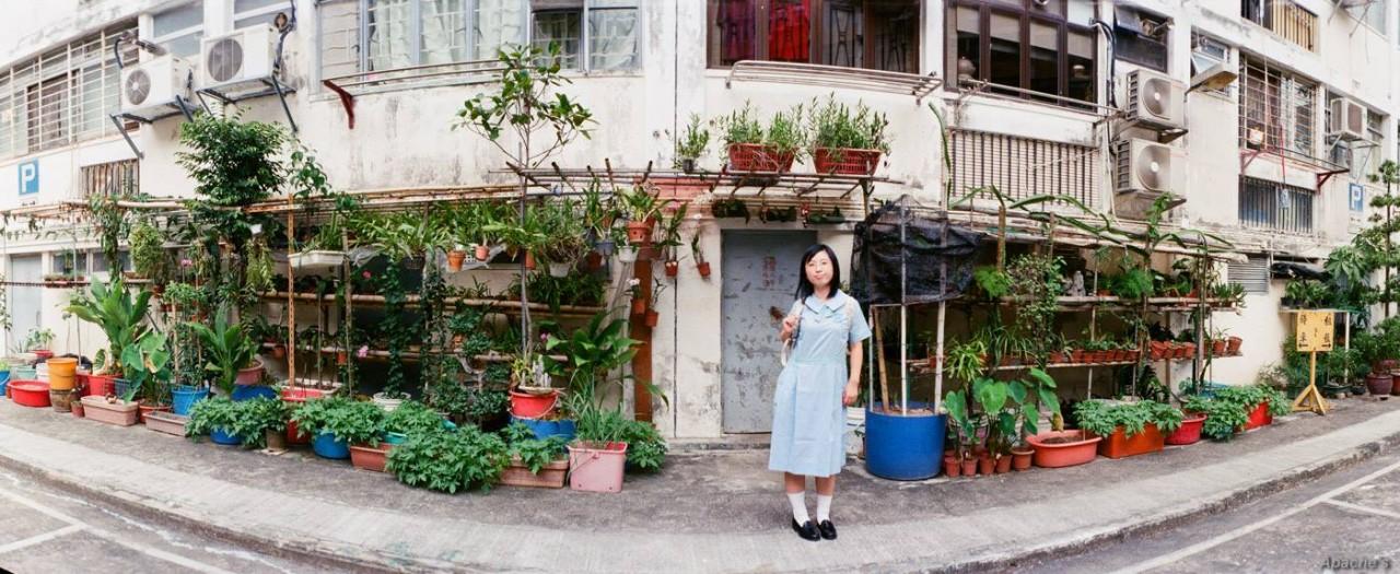 元朗公立中學校友會鄧兆棠中學