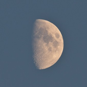 Mooning you