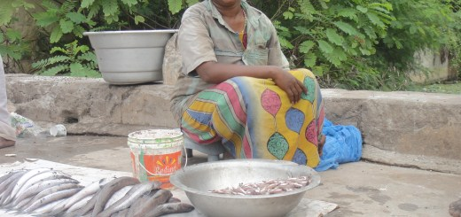 Maria Anadhai of Fish Vendors Co-op