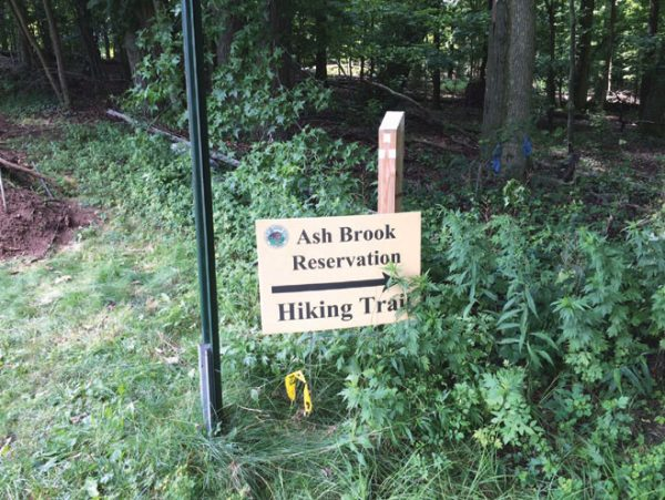N.J. Forest Fire Service to conduct Ash Brook burn