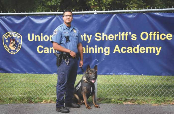 Sheriff's Office K-9 receives bullet- and stab-protective vest