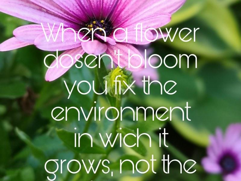 Din rätta miljö