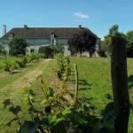 Bastide de Courcelles - Gizay - Vienne - France