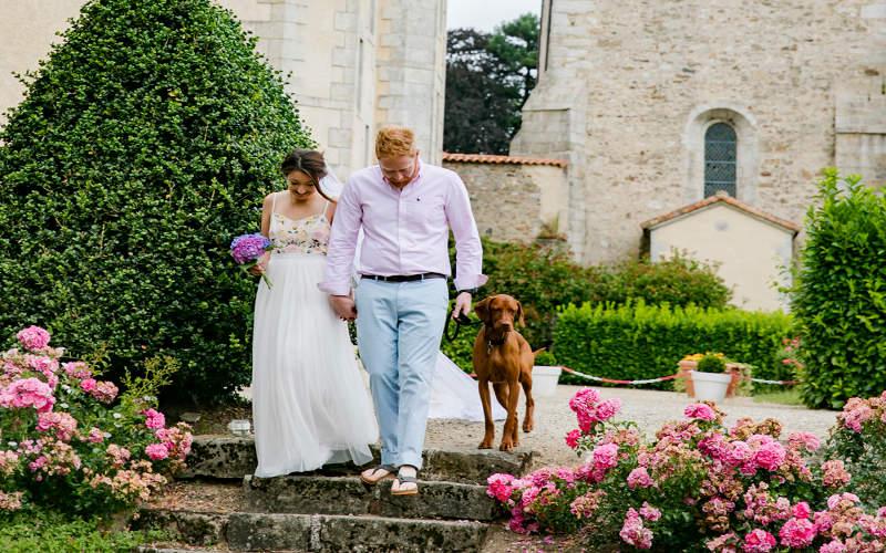 mariage et animal domestique