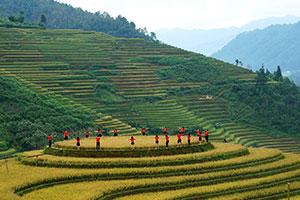 עונות מומלצות לטיול בווייטנאם