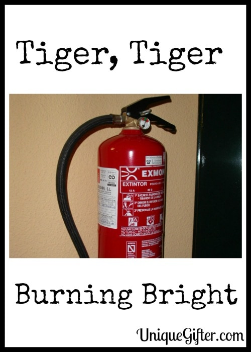 Tiger, Tiger Burning Bright
