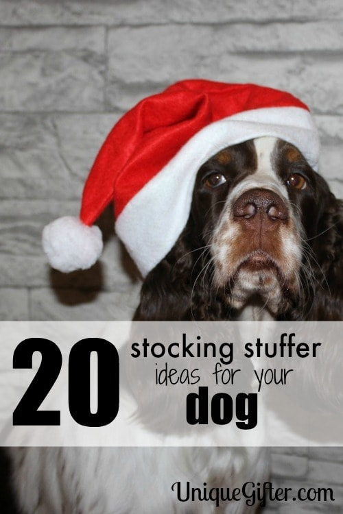 So cute! Number 4 is perfect. Love these stocking stuffer ideas for dogs.