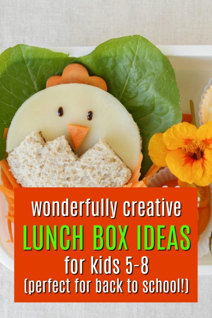 Fun lunch ideas for kids | Lunch box ideas for kids | How to make school fun | Back to School Ideas | Lunches with a twist
