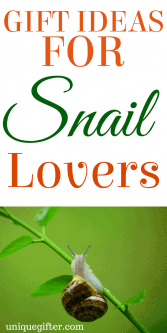 20 Gift Ideas for Snail Lovers