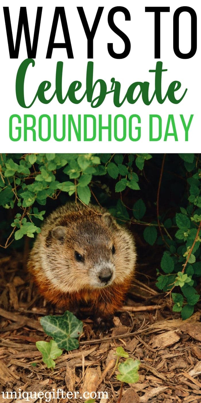 Creative ways to celebrate groundhog day | End of winter activities | Fun kid's activities for groundhog day | books about the weather and groundhog day | Punxsutawney Phil | Groundhog sees his shadow | 6 more weeks of winter