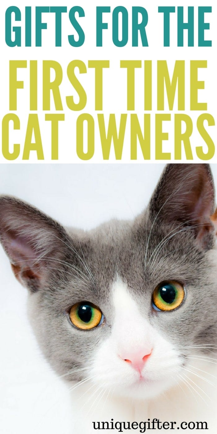 Gifts for the first time cat owner | Cat lady gift ideas | What to buy for my new cat | Creative presents for a friend who just bought a cat | Rescue cat gifts | new pet homecoming gifts | First time cat foster gift ideas | #catlady #cats #animallover