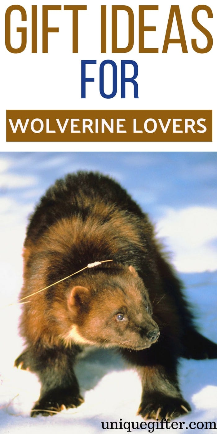 Gifts for wolverine lovers | Best wolverine lovers Gift Ideas | Entertaining Gifts for wolverine lovers | wolverine lover Gifts | Presents for Someone Who likes wolverines | Creative wolverine Loving Gift ideas | Presents to Buy For A Fan of wolverine | #wolverine #gifts #animallover