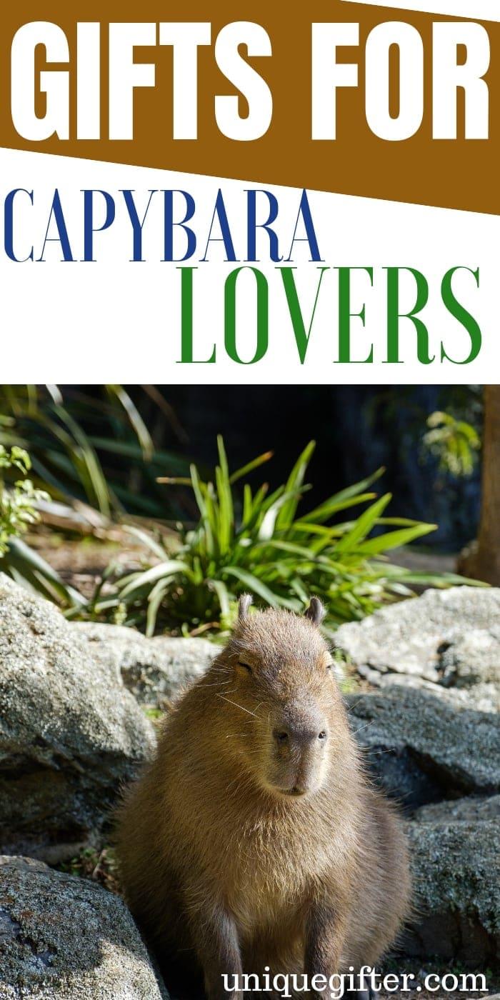 Gift Ideas For Capybara Lovers | Capybara Gifts | Capybara Lover Presents | Capybara Presents | Unique Capybara Presents | Creative Capybara Gift Ideas | #gifts #giftguide #presents #capybara #unique
