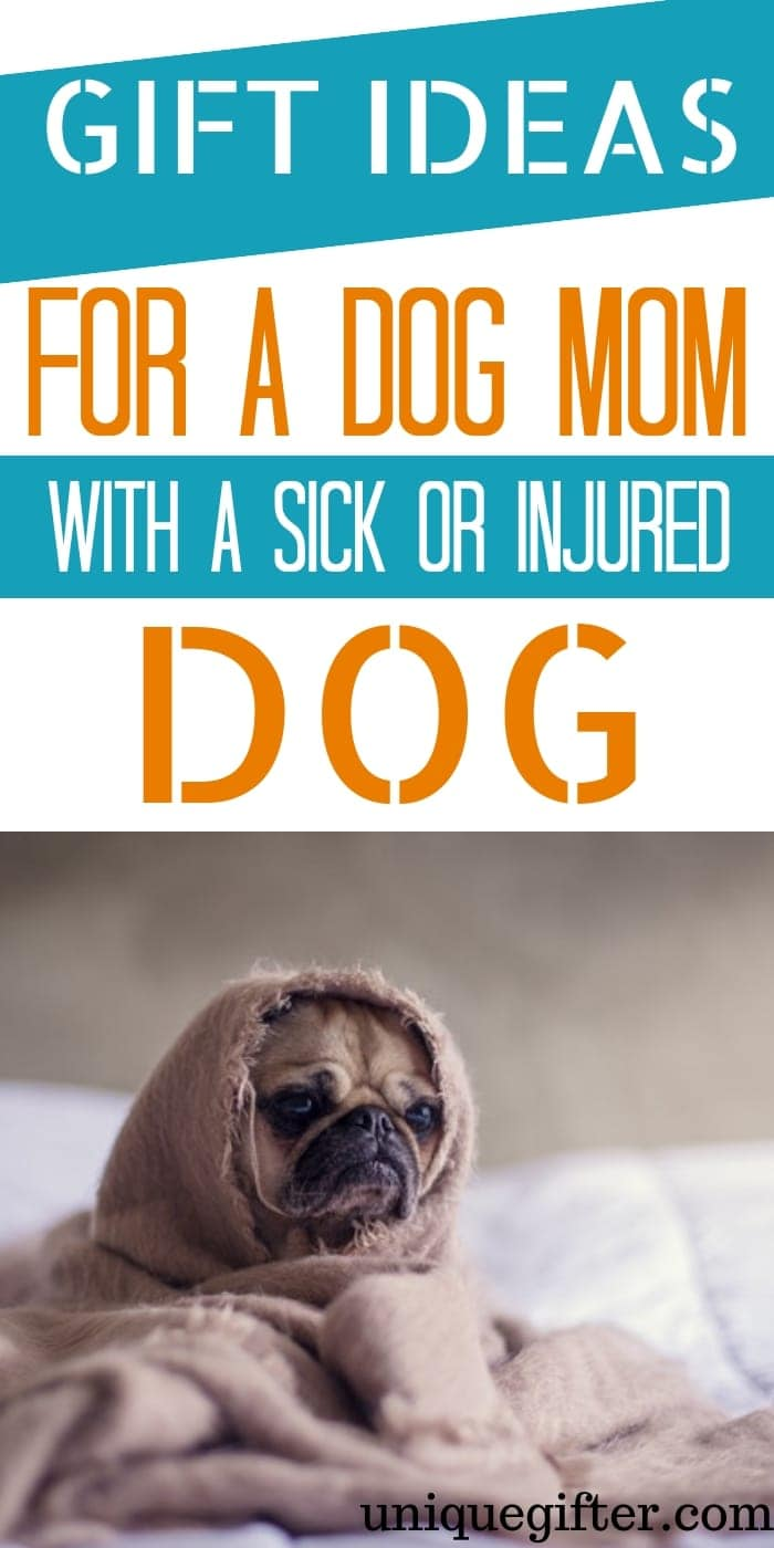 Gift Ideas For Dog Mom With Sick Or Injured Dog | Sick Dog | Injured Dog | Presents For Pet Owner | Unique Pet Owner Gifts | Gifts To Cheer Up Pet Owner With Sick Dog | #gifts #giftguide #dog #sickdog #presents