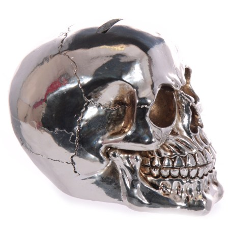 silver skull money box image 03