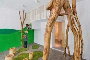 木の根が生えるお家