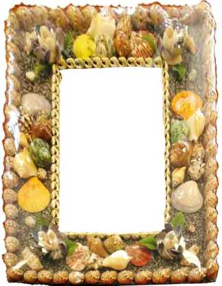 Rectangle Shell Frame Mirror