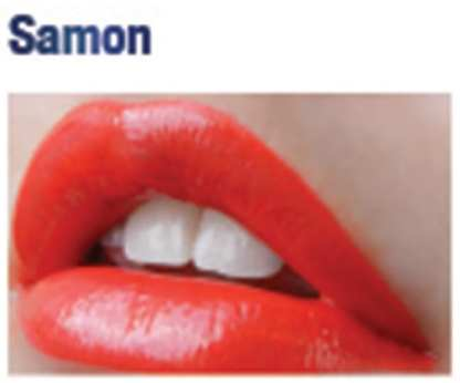 Lip Sense Samon 1130