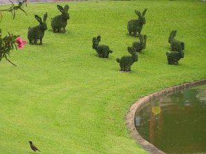 Topiary Bunny Yard – shared on POPSUGAR
