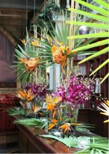 Bird of Paradise and Botanical Tropical Foliage Display – shared by Cuba Libre