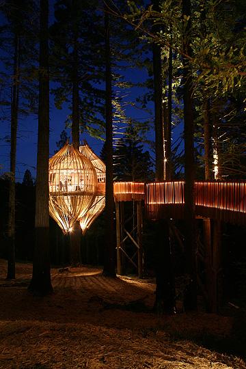 treehouse_restaurant7